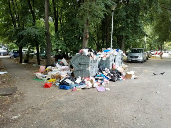 Хорор на Новом Београду: Ђубре затрпало вртић! (фото) 4